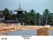 0001_0008 法起寺の塔