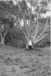 0017_0026 大きな木の下で