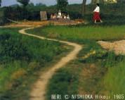 0003_5002 上宮での犬の散歩