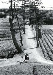 0007_0006 「肥たご」を運ぶ農夫
