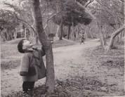 0017_0003 竜田公園
