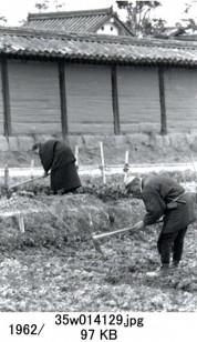 0001_0046 農作業